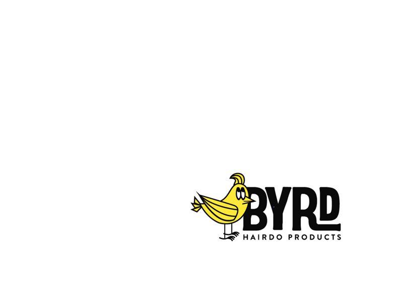 BYRD HAIRDO PRODUCTS(バード)
